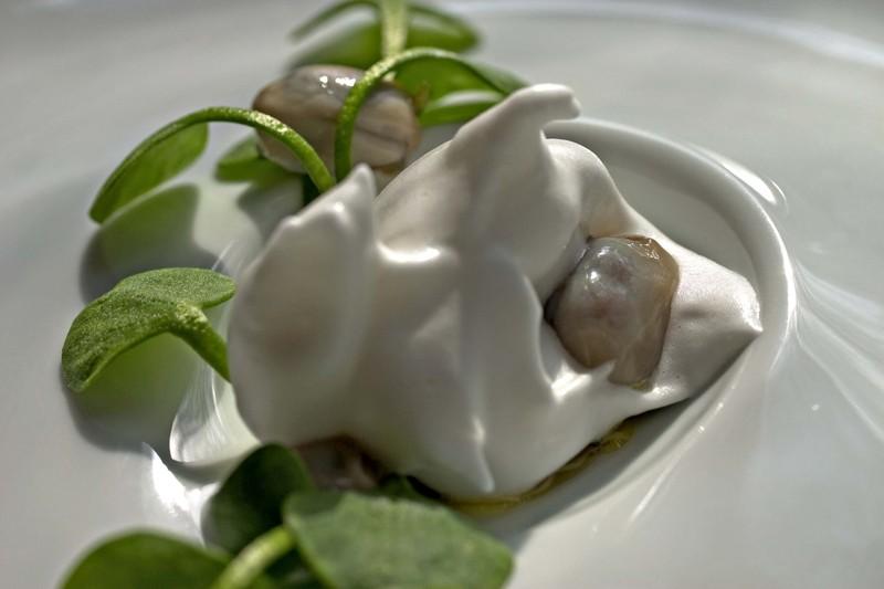 Oysterclaytoniahorseradish